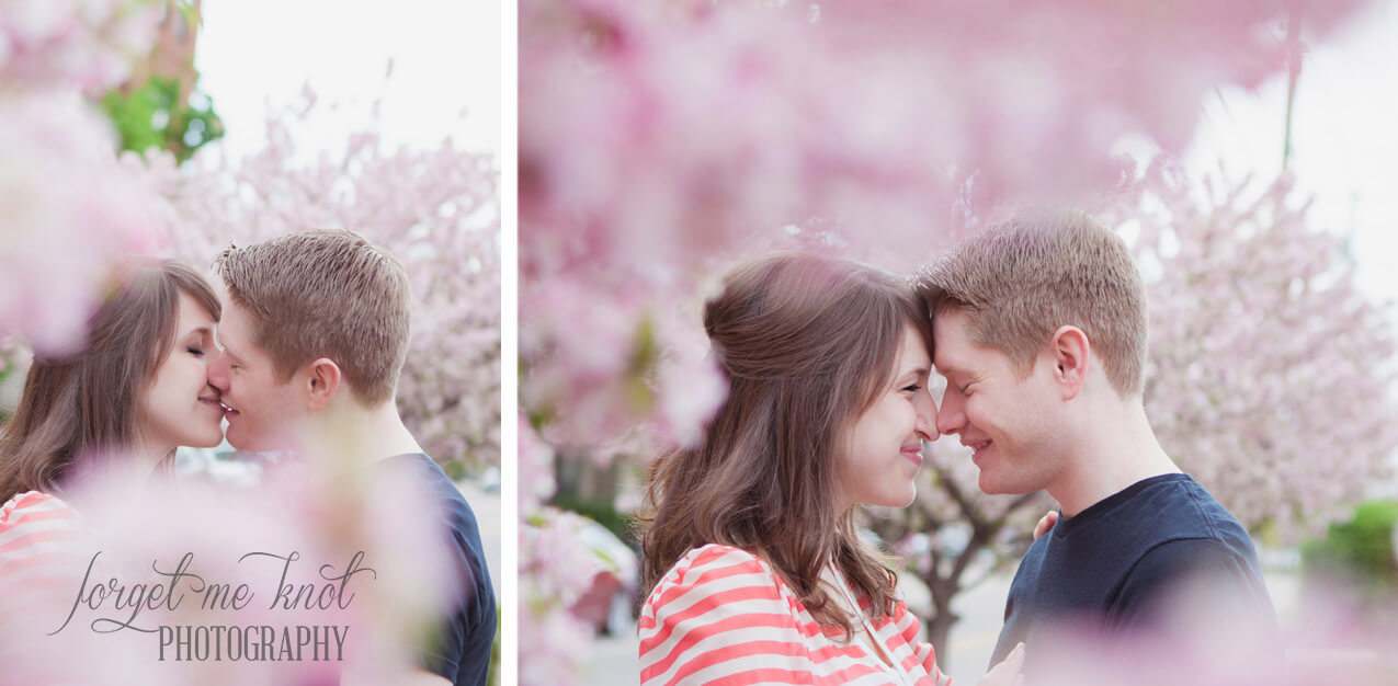 engaged couple with foreheads together with spring trees