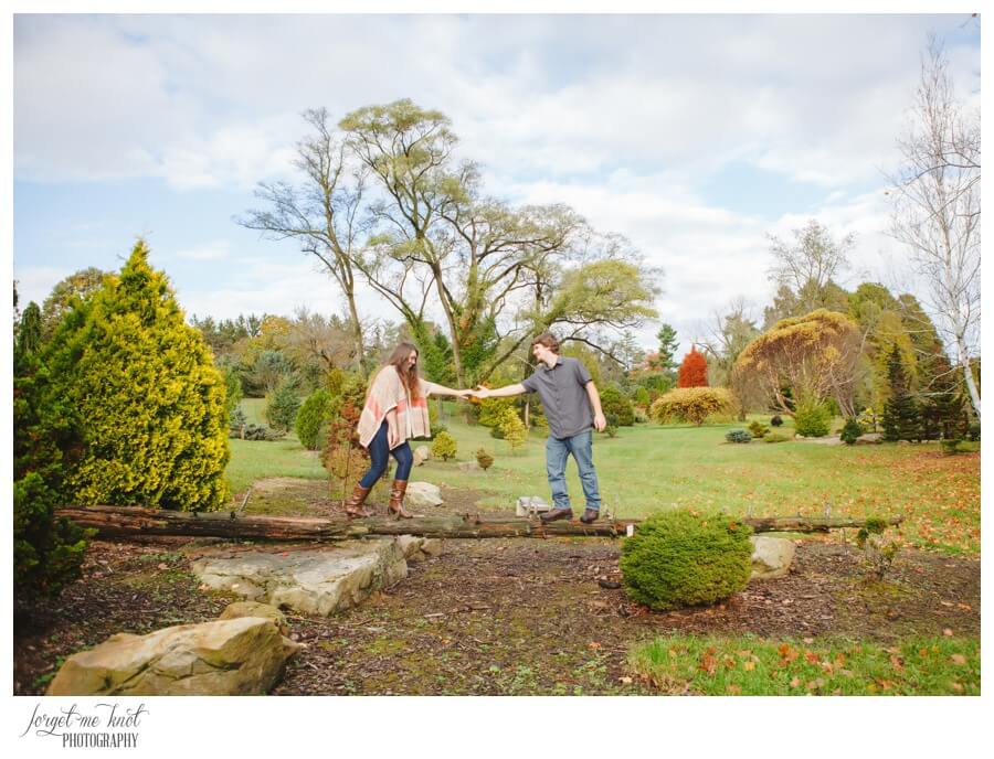 engaged couple holding hands on tree stump at park