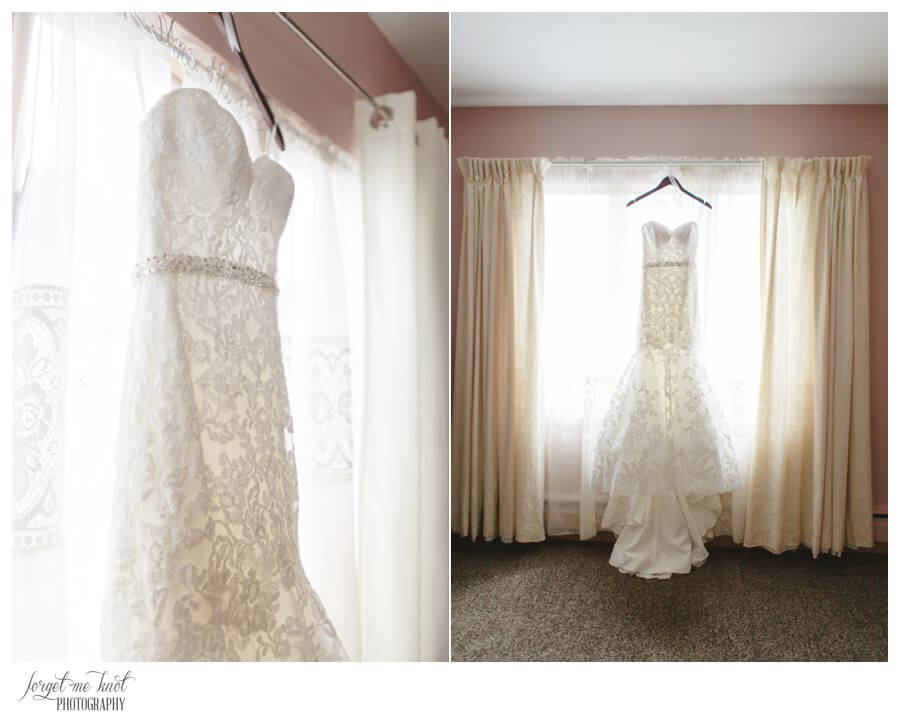 Nationwide Hotel and Conference Center Wedding Photos Lewis Center, OH Photographer wedding dress