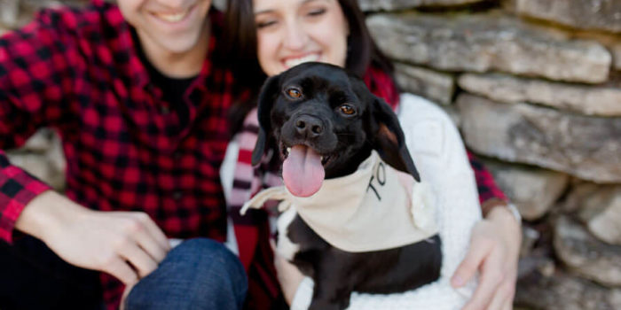 engagement photo of couple and their dog with tongue sticking out at osu