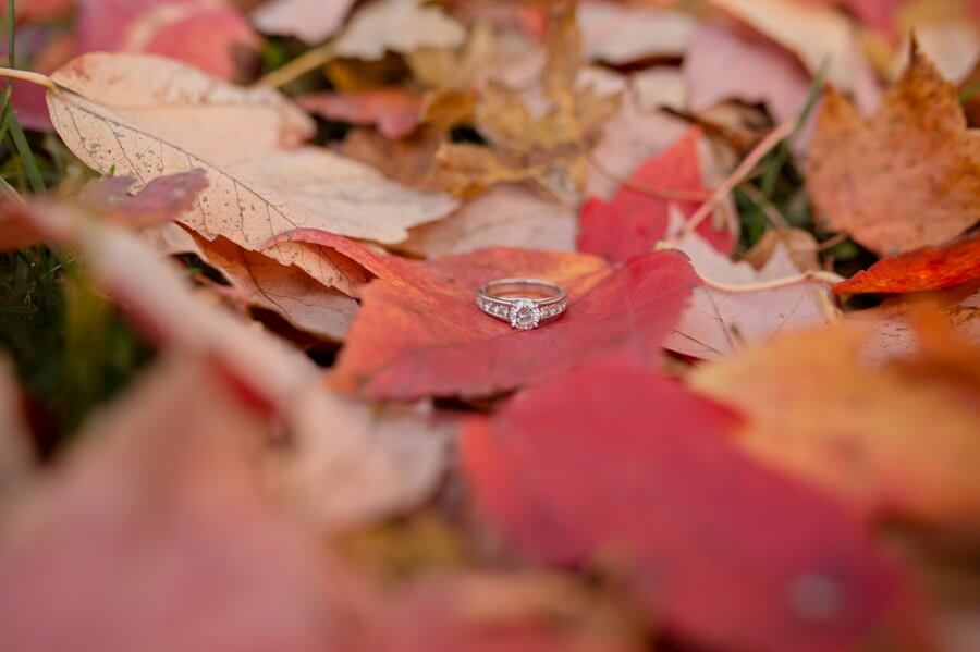 engagement ring at goodale park