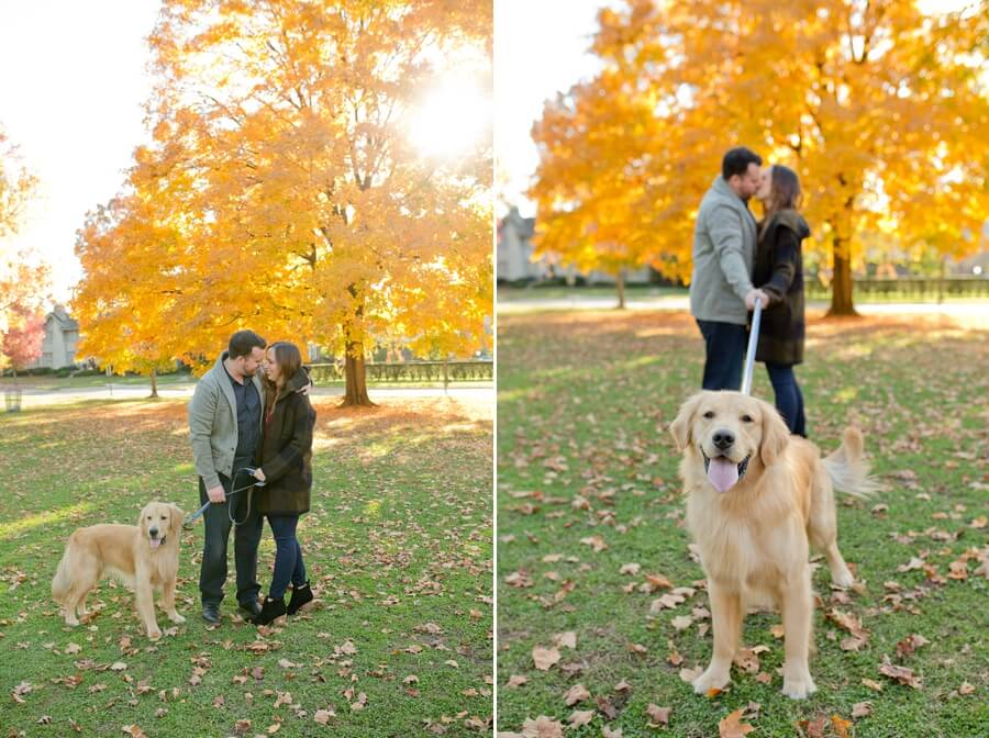 engaged couple with dog at park