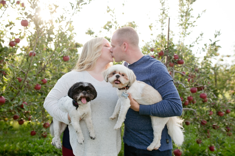 engaged couple with dogs at Lynd's Fruit Farm