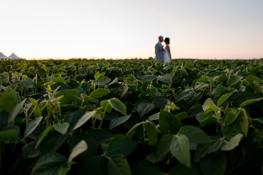bride and groom in background of field