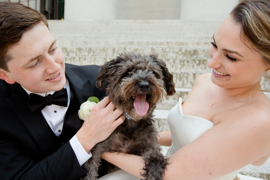 bride and groom with puppy at ohio statehouse