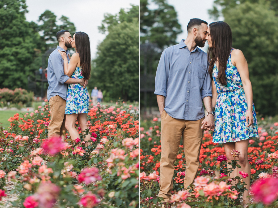 engaged couple kissing in field of roses