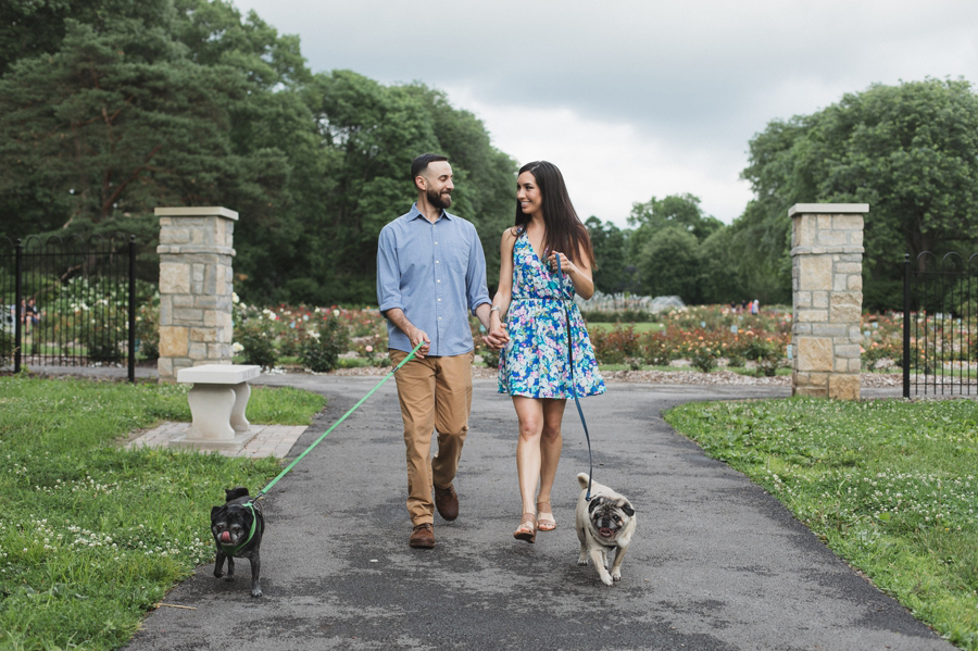 engaged couple walking their dogs at park